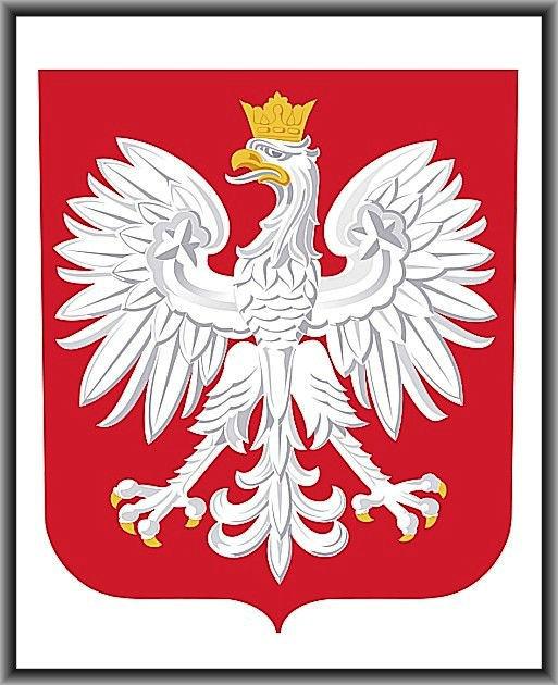 http://www.pspbardzice.szkolnastrona.pl/container///godlo.jpg